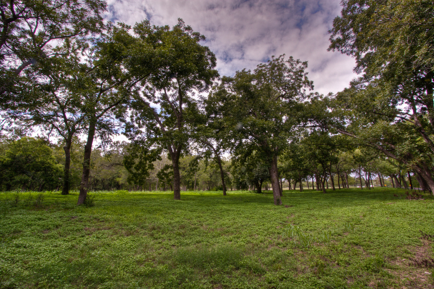 One of Schertz' Many Parks