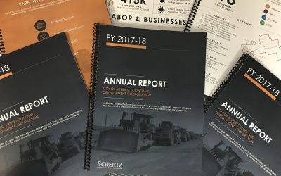 SEDC Year In Review: Annual Report FY 2017-18